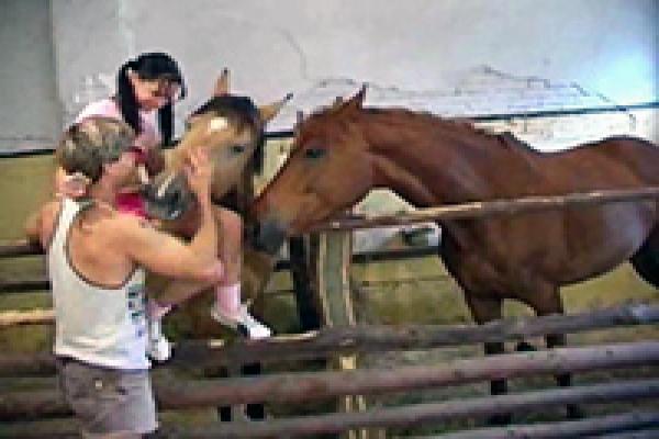 Порно horse play